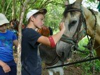 Le cheval, l'âne et les louveteaux jeannettes